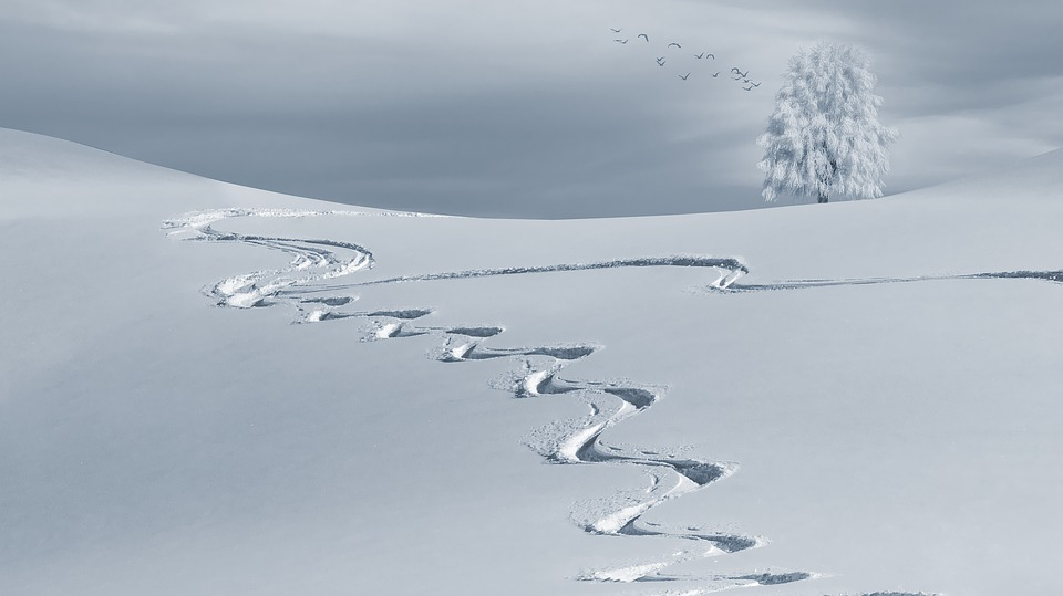 Caminar por Nieve